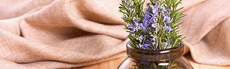 llc_aromatherapy_web